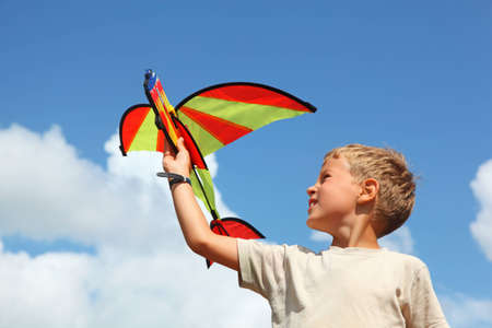 kite flying: boy plays kite against sky