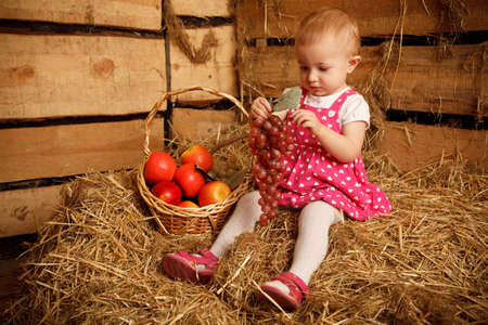 Little girl is sitting on pile of straw with grapes in their hands. Near fruit basket. photo