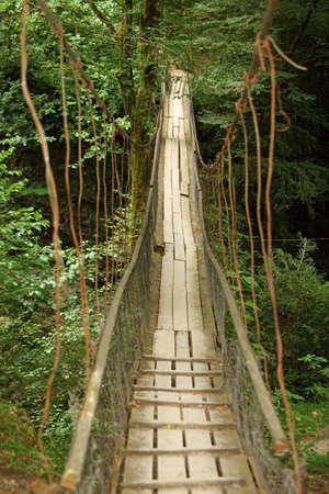 Wooden suspension bridge in wood photo