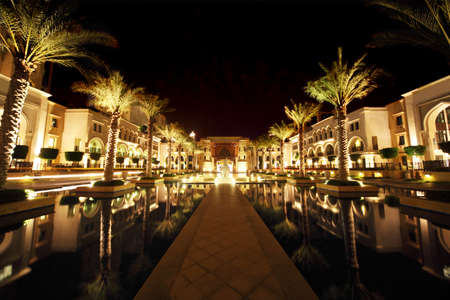 night Dubai street with palms and pool general view, United Arab Emirates Stock Photo - 11689501