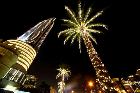 night Dubai palms with decor lamps and skyscraper, United Arab Emirates Stock Photo - 11709854