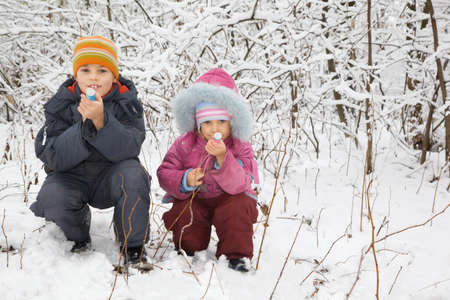 petard: cheerful boy and little girl sit down with petard in hands in winter in wood
