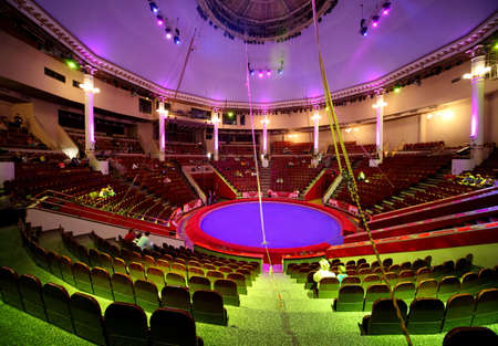 searchlight: circle arena in circus green and purple light lamps general view