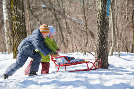 boy and little girl push sledge in winter in wood