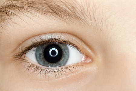 cornea: right blue eye of child with long eyelashes close up