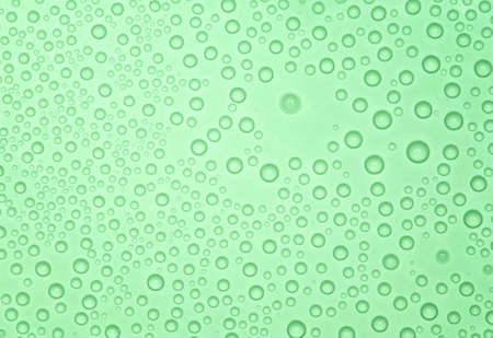 Abstract green background with many water bubbles. photo
