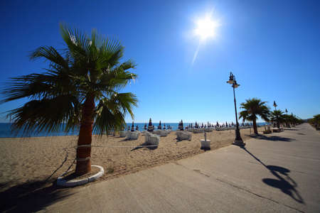 mandatoriccio: Concrete path with palms on sandy beach with folded umbrellas and sunbeds, burning sun and cloudless sky Editorial