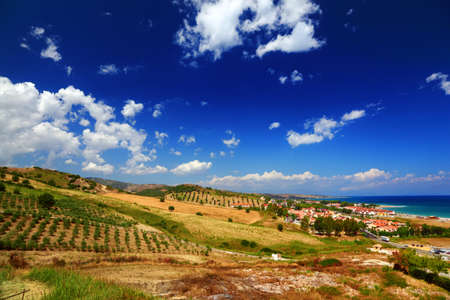 calabria: Big clearing with green bushes, trees and houses on coast under big blue sky