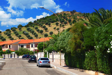 Cars park to sidewalks where are palm trees in residential area Stock Photo - 12512625