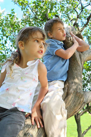 Girl and boy sit on caudex of lilac and look aside, focus on  girl photo