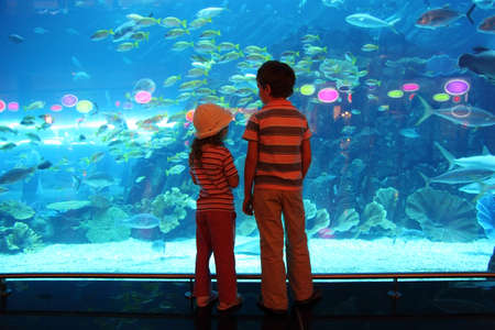 little boy and girl standing in underwater aquarium tunnel and looking on fishes, view from back