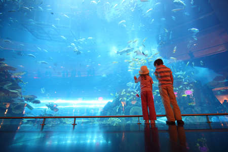 tunnel view: little boy and girl standing in underwater aquarium tunnel, view from back