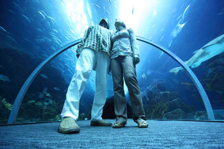 celling: man and woman standing in underwater aquarium tunnel and looking up, view from below, wide angle, focus on legs Editorial