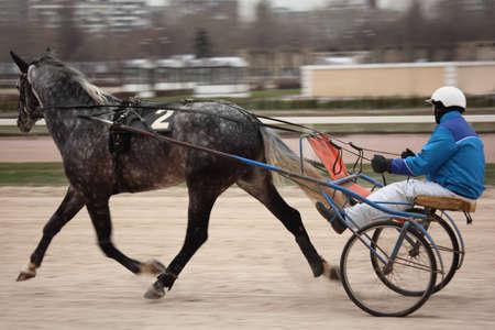 drafje: MOSKOU - 6 december: paard draf racen op Hippodroom van Moskou 6 december 2010 in Moskou, Rusland. Het centrum van Moskou hippodroom - de oudste in Europa, is gevestigd in 1834. Redactioneel