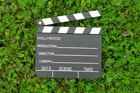 Cinema clapper board on green grass among flowering small purple flowers photo