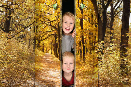 two boys from Footpath among yellowed trees in autumnal park doors collage photo