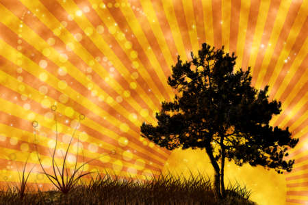 tree and grass on sunset sky collage photo