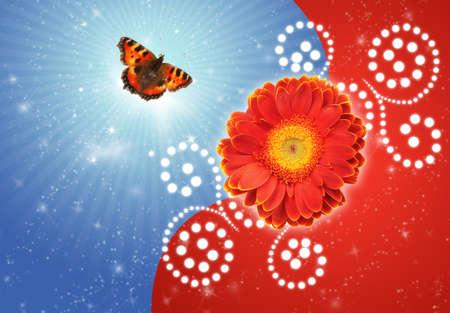 pokrzywka: Motyl i kwiat dalia-face collage pokrzywka
