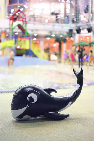 One amusing inflatable whale from rubber lies in water park near  pool photo