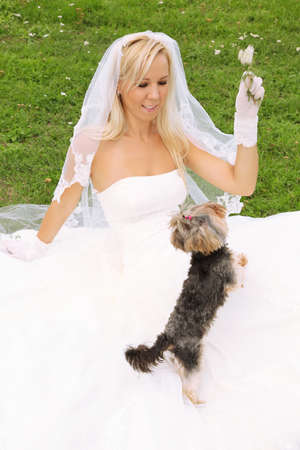 Beautiful young bride wearing white dress sitting on green grass and play with small dog photo
