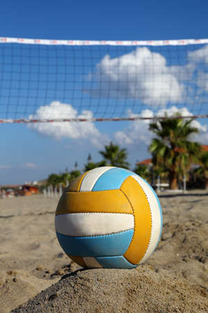 volleyball net, volleyball on beach and palm trees. focus on ball photo