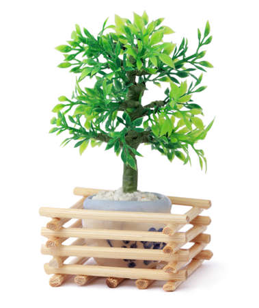 small beautiful toy green tree in pot, wooden sticks, branch with leaf photo