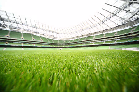 green-cut grass in large stadium at summer day, large soccer field, shallow depth of focus