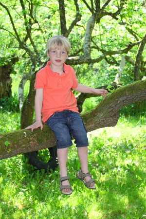 Happy young boy sitting on a branch of a tree photo