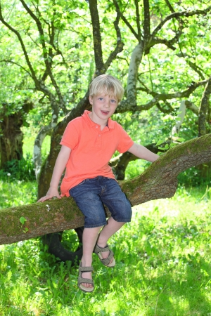 Happy young boy sitting on a branch of a tree Stock Photo - 13841049