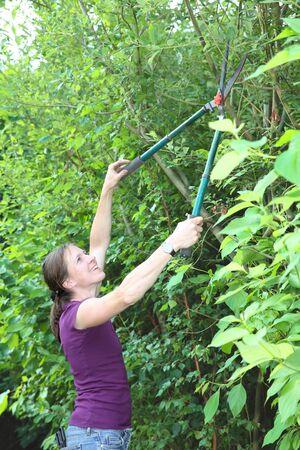 Gardening woman cutting a hedge Stock Photo - 14715355