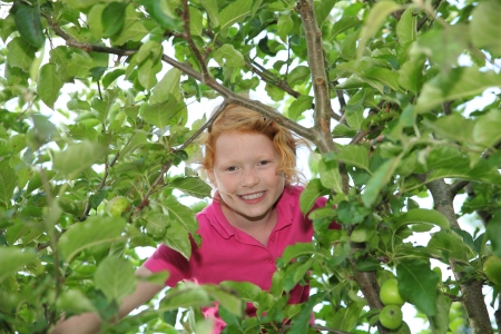 Smiling girl sitting in a tree Stock Photo - 14826016