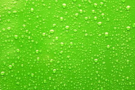Raindrops on a green background