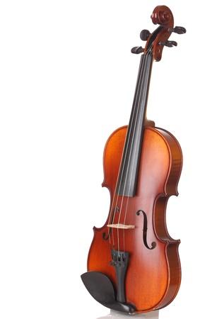 violines: Primer plano de un violín en el fondo blanco