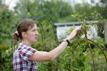 Young woman working outdoors in the garden photo