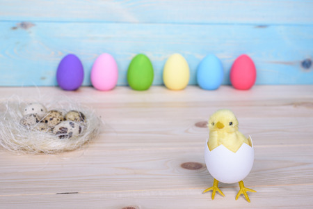 Easter eggs on wooden background with chicken in egg and nest.