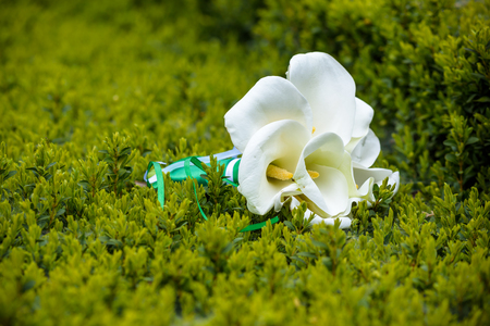 Wedding bouquet of lily on green grass or bush.