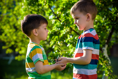 People kids sibling brother boy holding young plant in hands against green spring background. Earth day ecology holiday concept Stock Photo