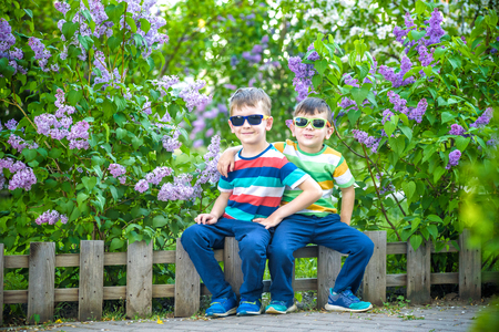 Portrait of two little brothers sitting on small fence in bushes of lilac wearing casual style clothes and sunglasses on background city and park landscape. Happy childhood friendship concept.