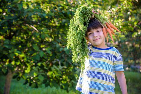Divertente ritratto di un bambino carino che tiene una carota biologica nostrana sopra la sua testa all'aperto. Archivio Fotografico