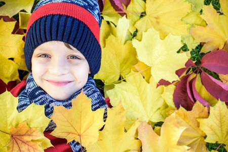 Emotional portrait of a happy and active little boy looking at the camera with a smile lying on his back on a carpet of yellow fallen leaves in the autumn park. Positive emotions Фото со стока