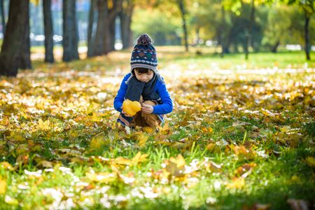 Golden autumn background with the fall leaves and little toddler boy playing in the autumnal foliage. Happy kid enjoying warm autumn sunny day. Best concept for banners and other media projects.