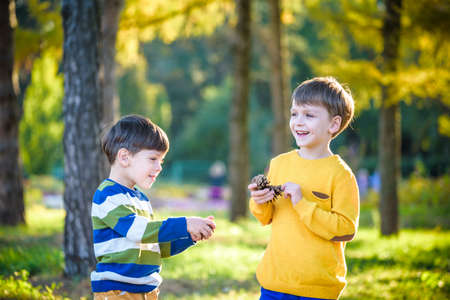 Two Cute sibling little boy playing together with two big pine cones outdoors. Game for kids on the nature. Sibling brothers are best friends. Friendship outdoor leisure family time with children.