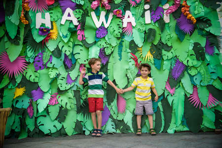 Two brother boys sibling kids pose on artificial jungle leaves with plate HAWAI. Dresses in colorful clothes shorts and t-shorts. Smiling and happy. Childhood vacation concept. Stockfoto
