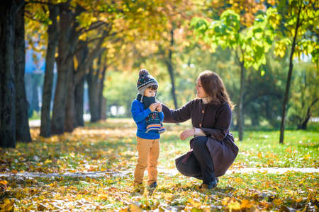 Mother and baby play in autumn park. Parent and child walk in the forest on a sunny fall day. Children playing outdoors with yellow maple leaf. Toddler boy play with golden leaves. Mom hugging kid.
