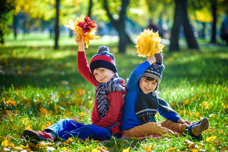 Happy children playing in beautiful autumn park on warm sunny fall day. Kids play with golden maple leaves. Season, children, lifestyle concept. Stock fotó