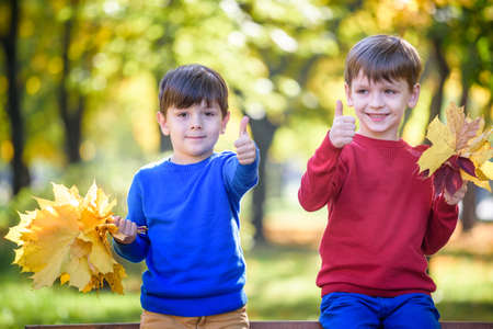Happy friends, schoolchildren having fun in autumn park among fallen leaves. Boys hang yellow leaves in their hands. Season, children, lifestyle concept.