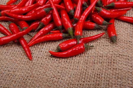 sackcloth: chili on sackcloth Stock Photo