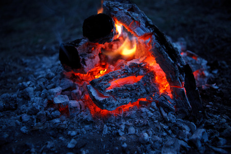 gas fireplace: fire dragon Stock Photo