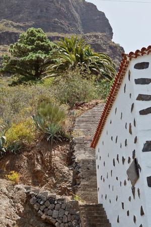 palma: mountain tropic summer village yard