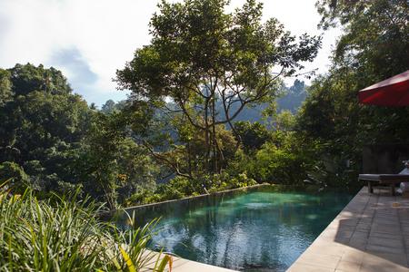 jungle tropic pool